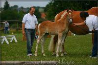 c2011_07_02_Serpico_133_005