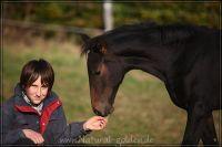 c2011_10_22_Fohlen_145