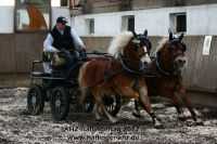 a2012_03_11_AHZ_Haflingertag_Fahren_153