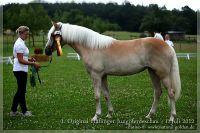 cc2012_07_01_Kat.Nr.12_BellaSophia_066