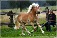 cc2012_07_01_Kat.Nr.18_Selma_028