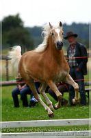 cc2012_07_01_Kat.Nr.19_Swenja_023