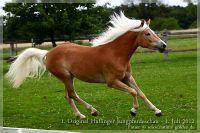 cc2012_07_01_Kat.Nr.23_Nuria_076