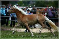 cc2012_07_01_Kat.Nr.29_QBelinda_059