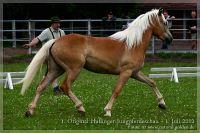 cc2012_07_01_Kat.Nr.30_Ladisa_039