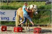 vv2013_06_22_Haflinger_FUN_Turnier_Bodenarbeit_208