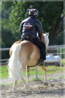 vv2013_06_22_Haflinger_FUN_Turnier_Kuer_183