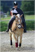 vv2013_06_22_Haflinger_FUN_Turnier_Kuer_240