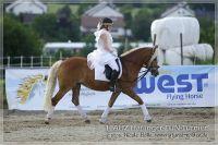 vv2013_06_22_Haflinger_FUN_Turnier_Kuer_272