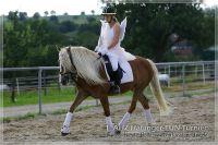 vv2013_06_22_Haflinger_FUN_Turnier_Kuer_282