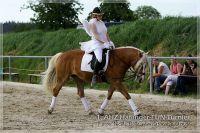 vv2013_06_22_Haflinger_FUN_Turnier_Kuer_306