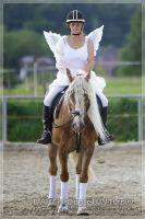 vv2013_06_22_Haflinger_FUN_Turnier_Kuer_316