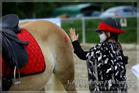 vv2013_06_22_Haflinger_FUN_Turnier_Reiterspiele_193