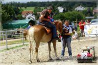 vv2013_06_22_Haflinger_FUN_Turnier_Reiterspiele_381