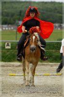 vv2013_06_22_Haflinger_FUN_Turnier_Reiterspiele_506
