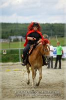 vv2013_06_22_Haflinger_FUN_Turnier_Reiterspiele_512