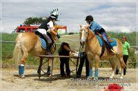 vv2013_06_22_Haflinger_FUN_Turnier_Team_063