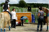 vv2013_06_22_Haflinger_FUN_Turnier_Team_082