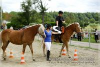 vv2013_06_22_Haflinger_FUN_Turnier_Team_100