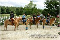 vv2013_06_22_Haflinger_FUN_Turnier_Trail_006