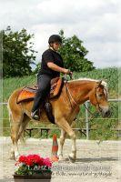 vv2013_06_22_Haflinger_FUN_Turnier_Trail_020