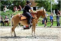 vv2013_06_22_Haflinger_FUN_Turnier_Trail_030