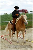 vv2013_06_22_Haflinger_FUN_Turnier_Trail_071