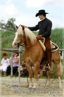vv2013_06_22_Haflinger_FUN_Turnier_Trail_093