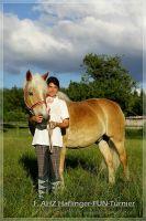 vv2013_06_22_AHZ_Haflinger_FUN_Turnier_197