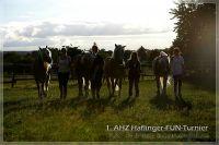 vv2013_06_22_AHZ_Haflinger_FUN_Turnier_257