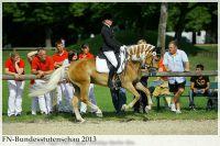 aaa2013_08_Bundesstutenschau_020_Narnia_049